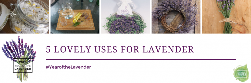 5 Lovely Uses for Lavender - #yearofthelavender - National Garden Bureau