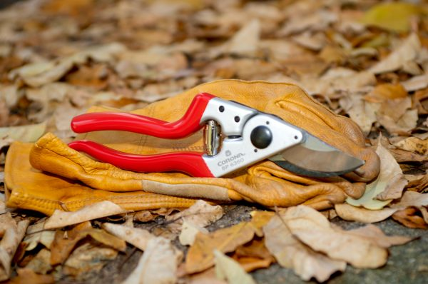 Forged Aluminum Bypass Pruner – 1 in