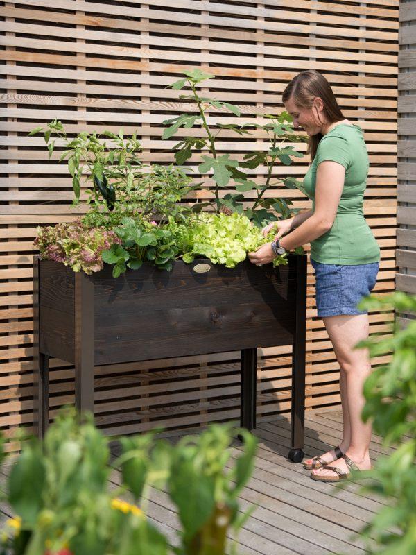 Eco-Stain Rolling Cedar Patio Garden