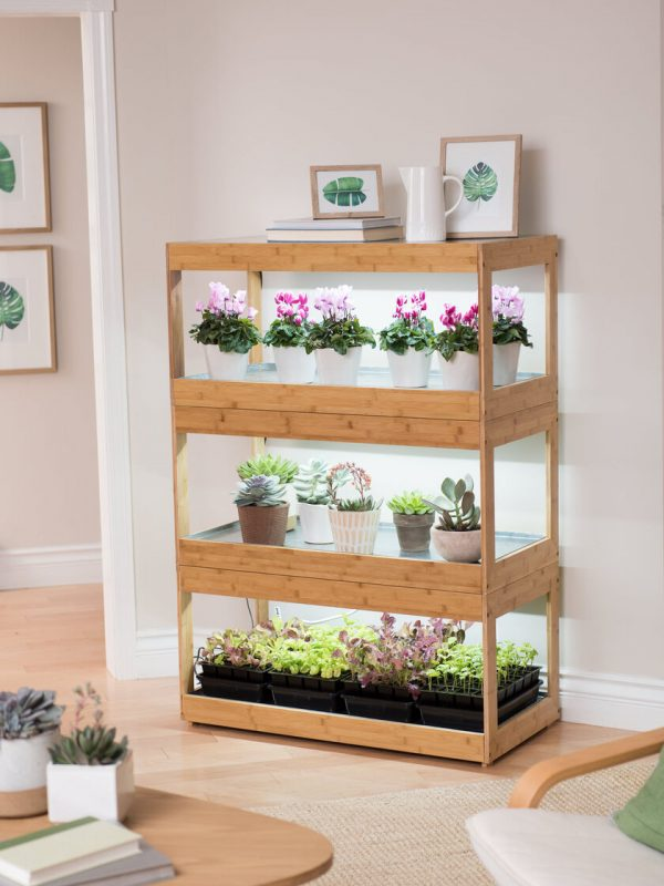 Bamboo LED Grow Light Garden for Succulents and Seeds