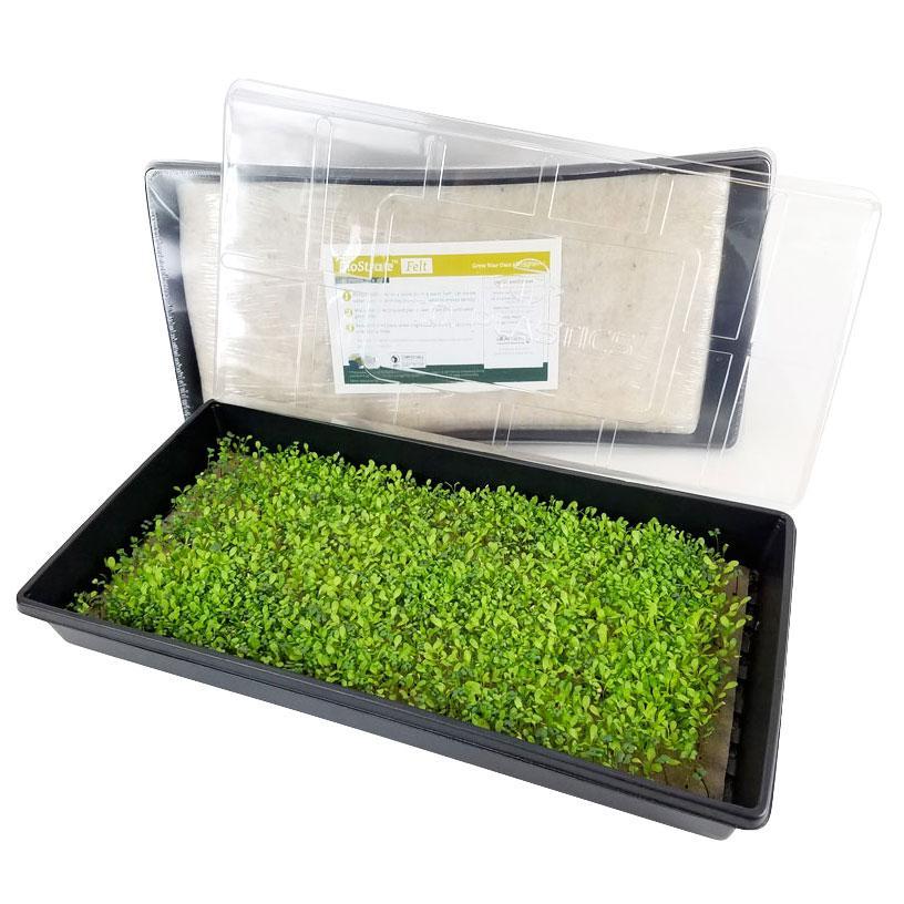 GardenTrends Biostrate Felt Micro Greens Kit - National Garden Bureau Member