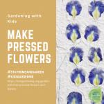 Make pressed flowers - National Garden Bureau