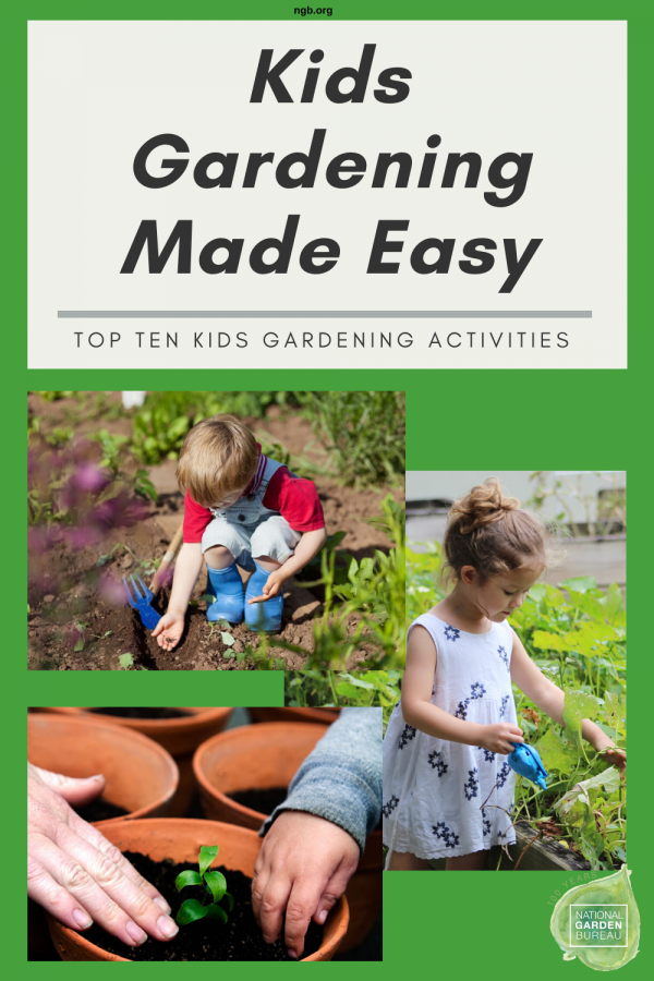 Kids Gardening Made Easy with these top 10 tips - National Garden Bureau
