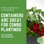 Add combos to your Victory Garden 2.0 container - National Garden Bureau