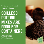 Soilless Potting soil works well in your Victory Garden 2.0 Containers - National Garden Bureau