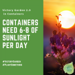 Container plants need 6-8 hours of sunlight per day - Tips for planting your own Victory Garden 2.0 Containers - National Garden Bureau