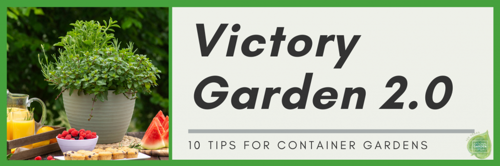 Victory Garden 2.0 - 10 tips for container gardens - National Garden Bureau
