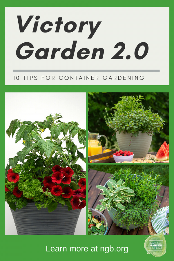 10 Tips for making your own Victory Garden 2.0 Container Garden - National Garden Bureau #victorygarden