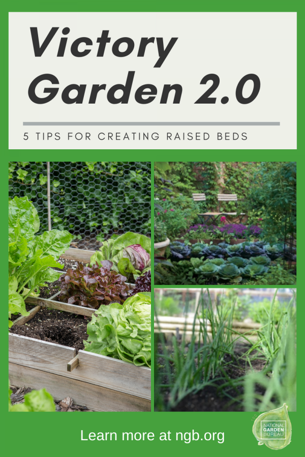 5 tips on Building Your Own Victory Garden 2.0 Raised Garden Beds - National Garden Bureau