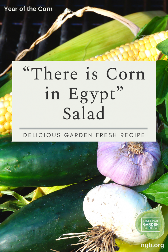 """There is Corn in Egypt"" Salad Recipe to celebrate the Year of the Corn - National Garden Bureau"