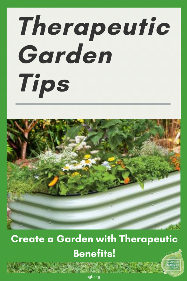 Create a Garden with Therapeutic Benefits! - National Garden Bureau