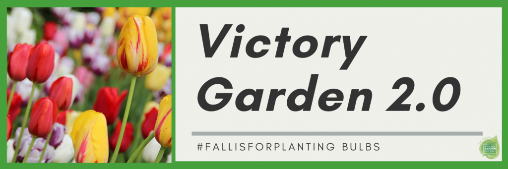 Fall is for Planting Bulbs - Enjoy the beauty of spring flowers by planting your bulbs now! - National Garden Bureau