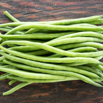 Grenada from Pure Line - Year of the Garden Bean - National Garden Bureau