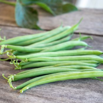 Saba from Pure Line - Year of the Garden Bean - National Garden Bureau