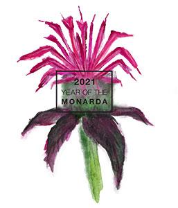 2021 is the Year of the Monarda - National Garden Bureau