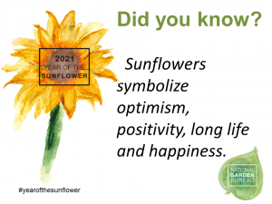 The Sunflower symbolize optimism, positivity, long life and happiness. - Year of the Sunflower - National Garden Bureau