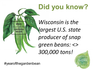Wisconsin is the largest US state producer of snap green beans - Year of the Garden Bean - National Garden Bureau