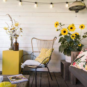 Sunfinity from Syngenta - Year of the Sunflower - National Garden Bureau
