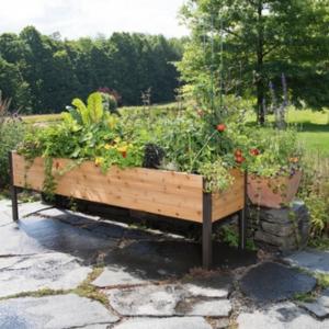 2'x8' Elevated Cedar Planter Box - National Garden Bureau