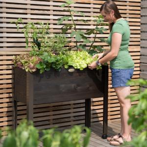Gardener's Supply Eco-Stain Cedar Pation Garden - National Garden Bureau Member