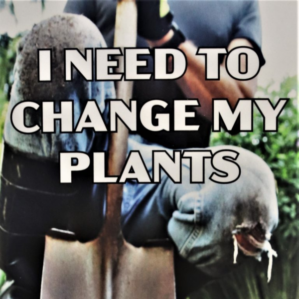 I need to Change My Plants - National Garden Bureau - Holiday Gardening Gifts