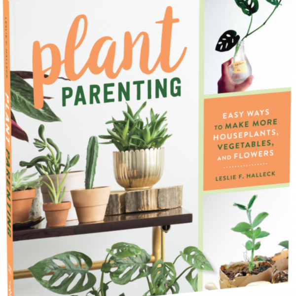 Plant Parenting - Easy Ways to Make More Houseplants, Vegetables, and Flowers - National Garden Bureau - Holiday Gardening Gifts