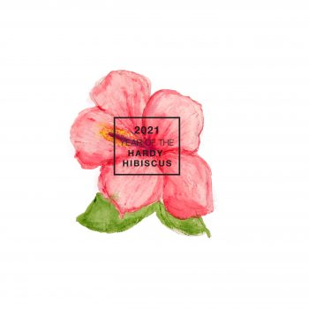 2021 is the Year of the Hardy Hibiscus
