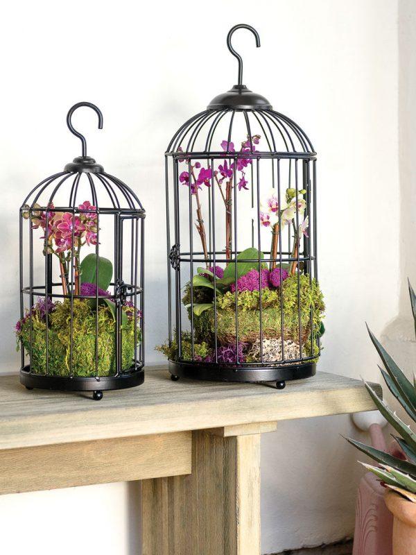 Hanging Birdcage Planters, Set of 2