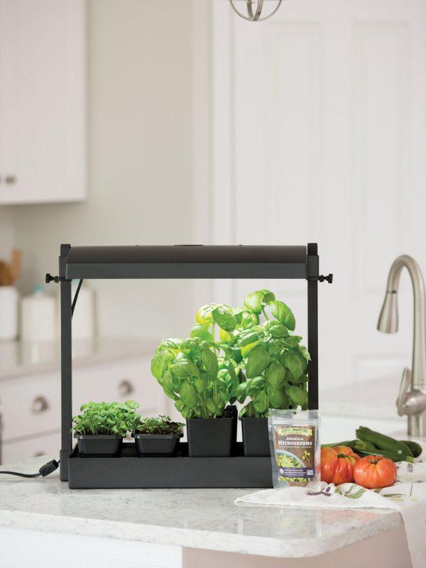 Organic Herb and Microgreens Grow Kit