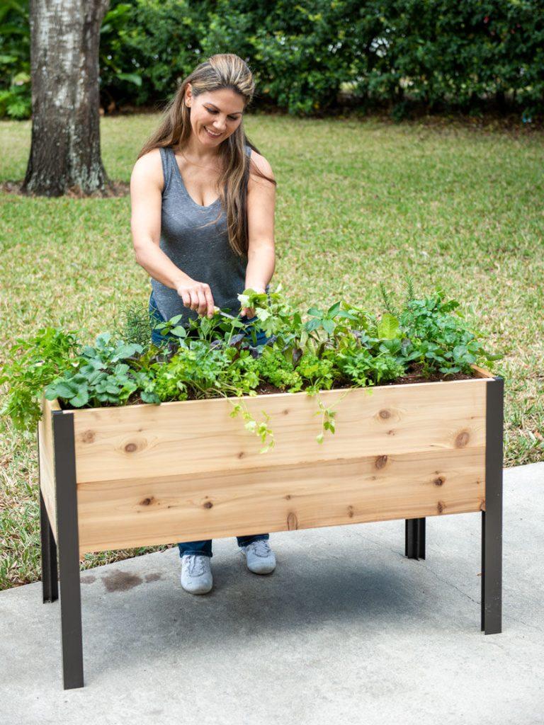 Self-Watering Elevated Cedar Planter Box, 2' x 4' - Gardener's Supply - National Garden Bureau