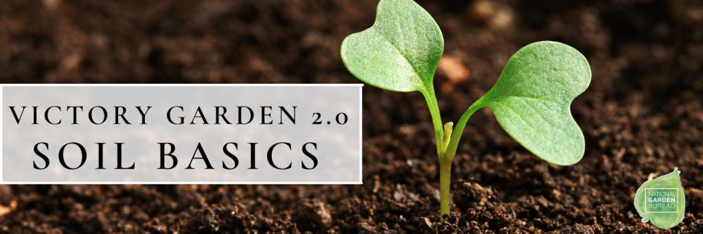 Victory Garden 2.0 Soil Basics - National Garden Bureau