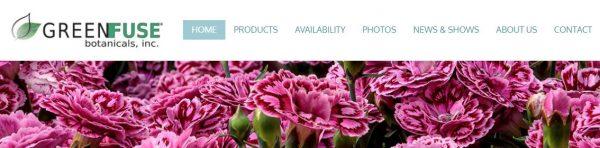 GreenFuse website