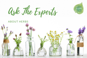Ask The Experts Webinars Series - about Herbs - National Garden Bureau