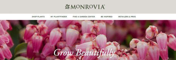 Monrovia website