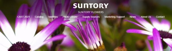Suntory website