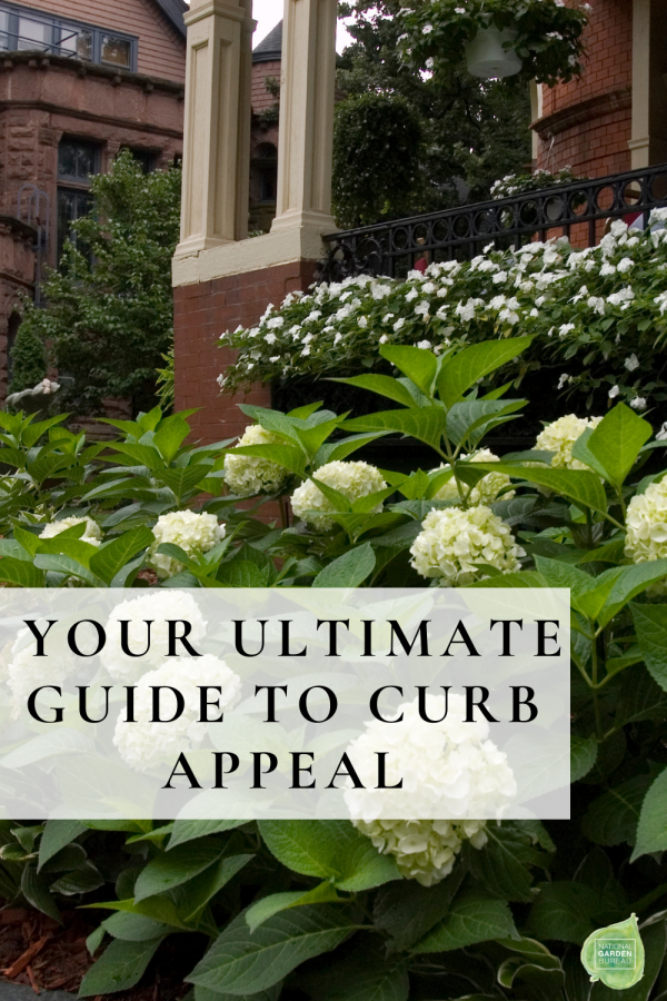 Your Ultimate Guide to Curb Appeal - 10 Tips to be the Best Front Yard on the Block - National Garden Bureau