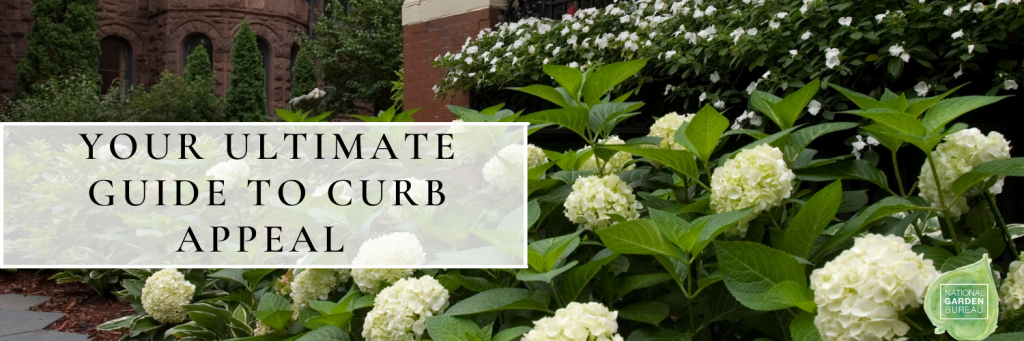 10 Tips on creating the Ultimate Curb Appeal - National Garden Bureau