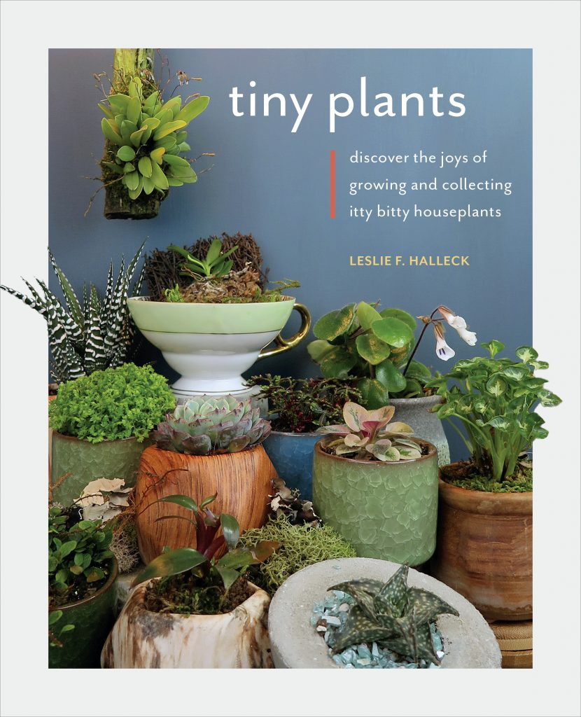 Tiny Plants - Discover the Joys of Growing and Collecting Itty Bitty Houseplants - National Garden Bureau