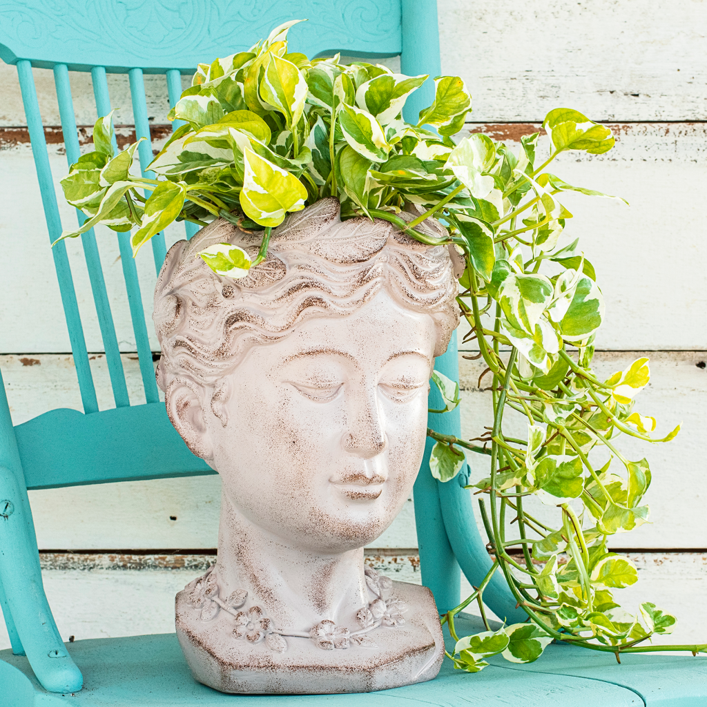 Greek Goddess Head Planter Statue from NGB member Brecks