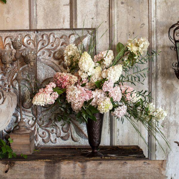 First Editions Strawberry Sundae is a beautiful cut flower for summer designs - National Garden Bureau