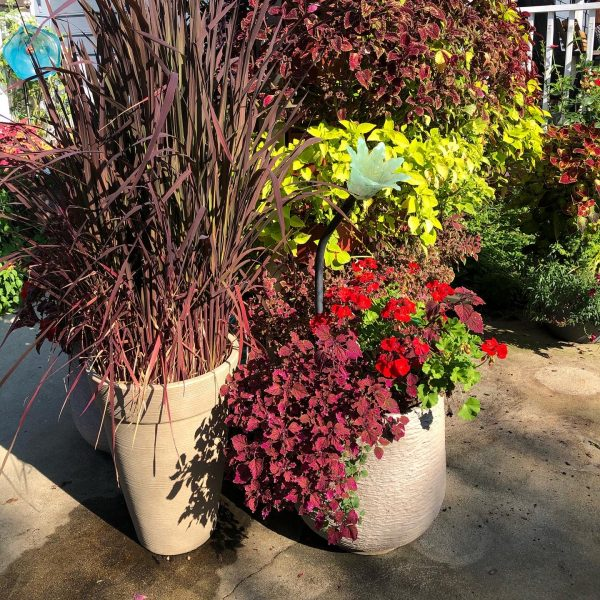 Foodscape in Containers is a great way to maximize beauty and bounty throughout the growing season - National Garden Bureau
