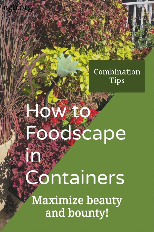 Foodscaping in Containers is a great way to maximize beauty and bounty throughout the growing season. - National Garden Bureau