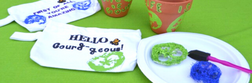 Crafting with Luffa Sponges is fun and easy to do - National Garden Bureau
