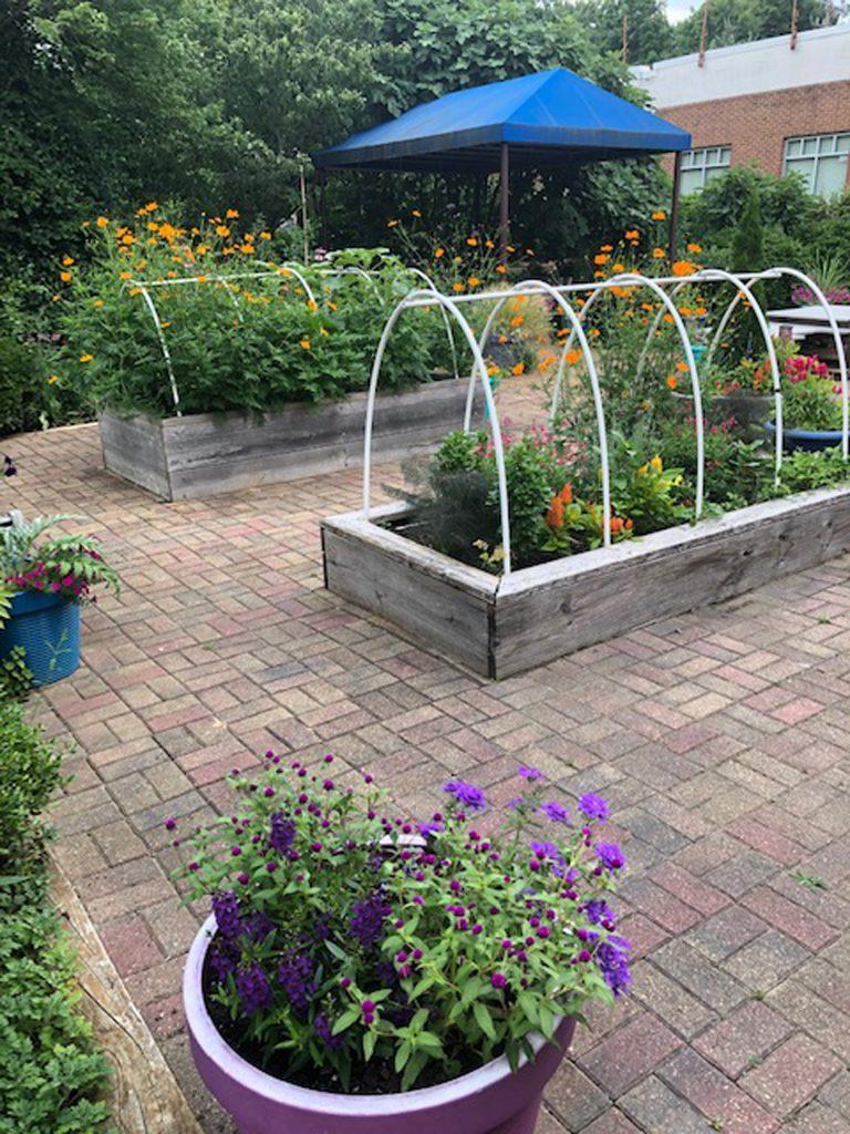 Grant Recipent: The Children's Garden CFEC | National Garden Bureau